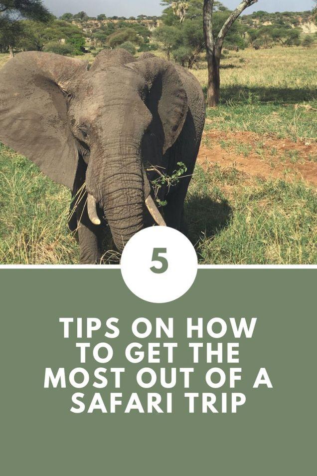 five tips safari – listicle pinterest