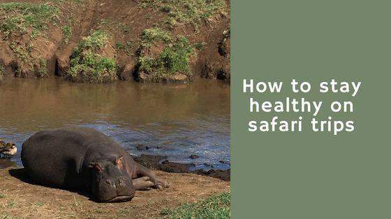 safari healthy blog banner