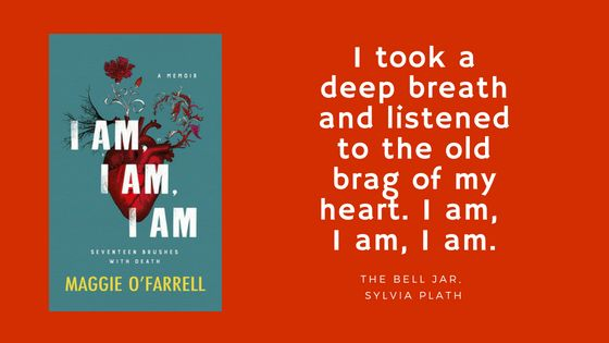 blog book review of I am I am I am